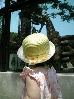 なおの夏休み(そのにの続き)